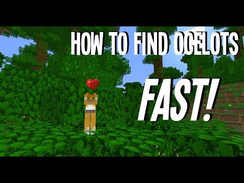 Minecraft: How to find Cats (Ocelots) Fast!! In 1.7.4