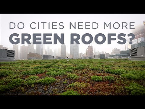 Do Cities Need More Green Roofs? | NPR