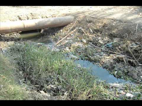 Small Scale Techniques to reduce water pollution-Egypt.wmv