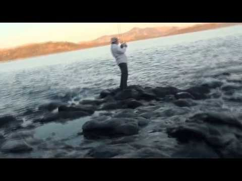 Chaos on Coral Island - The Raw Files - Madagascar