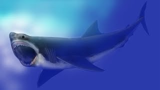 Is Megalodon Still Alive Today?