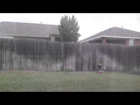 Dog chewing through fence