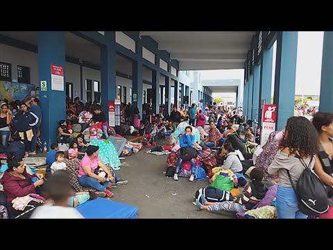 Xxx Mp4 D Trumpas Nežada Pasigailėjimo Prasidės Milijonų Migrantų Išsiuntimas Iš JAV 3gp Sex
