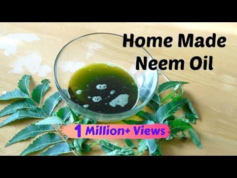 DIY Neem Oil  Home Remedy for Lice, Hair Thinning & Dandruff  Sushmita's Diaries