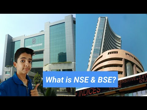[Hindi]What is NSE and BSE?