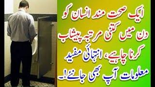 Mardana Timing K Liay Tips#Imam Ghazali Ny Farmaya Humbistari Say