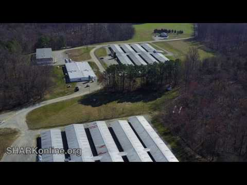 Drone Exposes Warehoused Research Beagles