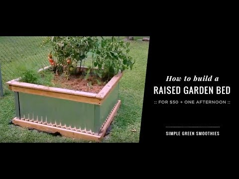How to build a simple raised garden bed for $50  | Simple Green Smoothies