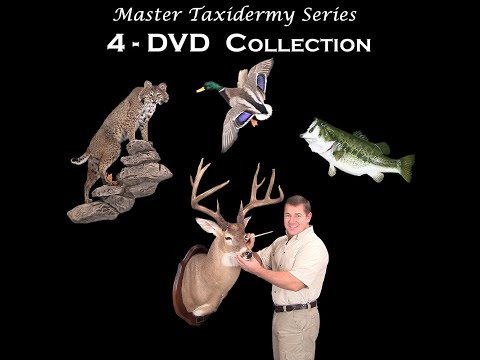 How To Taxidermy - Deer, Fish, Birds, Big Game