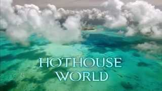 Download The FUTURE is WILD 100 Million Years Introduction Video