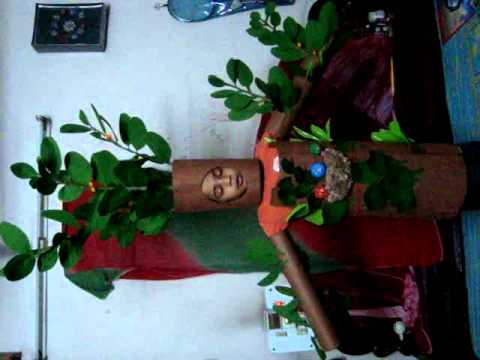 banyan tree in fancy dress competition