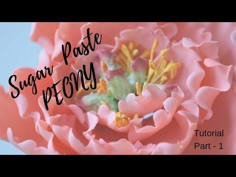 Part 1 Gum Paste Peony Tutorial