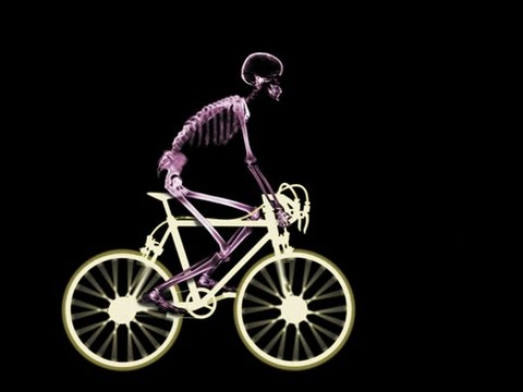 Cycling: Is getting a professional fit worth it?