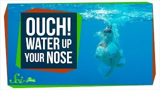 Why Does Getting Water Up Your Nose Hurt So Much?