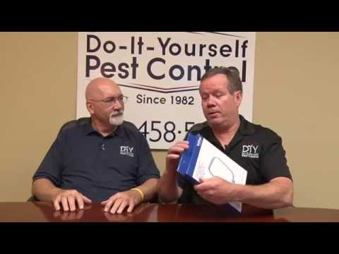 How To Get Rid Of Bed Bugs Bed Bug Control Products