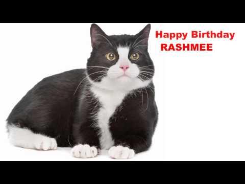 Xxx Mp4 Rashmee Cats Gatos Happy Birthday 3gp Sex