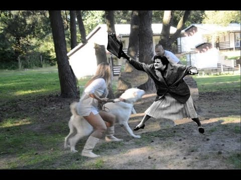 Brave Lady Saves a Guy from Vicious Dog Attack!!!