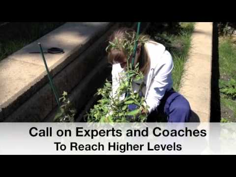 Better Business Success with Coaching and Pruning in a Five Step System