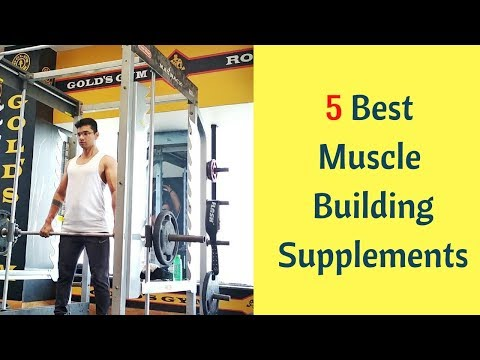 5 Most Effective Muscle Building Supplements | 5 Supplements Which Help In Bulking |Supplement Stack