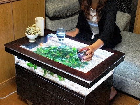 Awesome  DIY Fish Tank Coffee Table