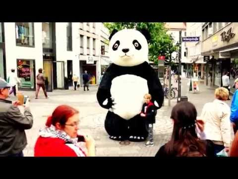 Panda Cosplay for Money in Europe