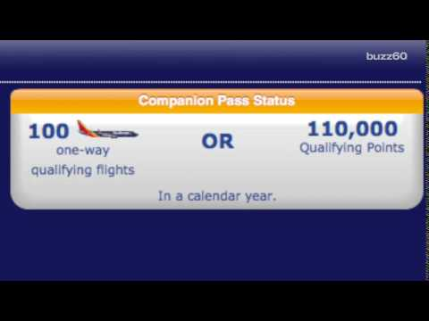 How to get your travel companion to fly for free