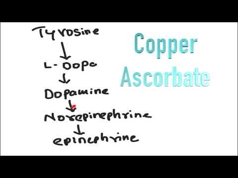 Tyrosine to Dopa, Norepinephrine, Epinephrine and Melanin