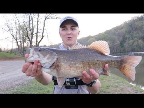 Big River Smallmouth -- New River Bass Fishing