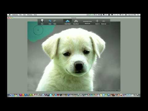 Mac Photo Application Colorize Full Review