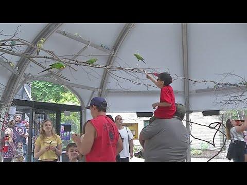 Boomerang Island now open at Buffalo Zoo