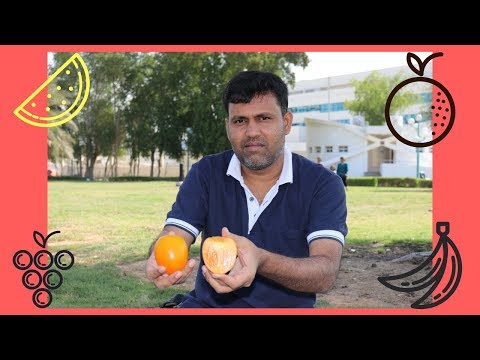 How To Cut Persimmon Fruit and Taste| Kaki Fruit| சீமைப் பனிச்சை