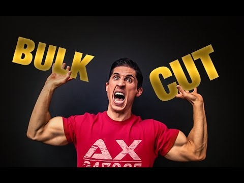Bulking | Cutting | The Truth!!