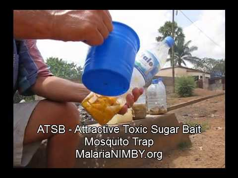 Attractive Toxic Sugar Baits Mosquito Trap for Malaria ATSB