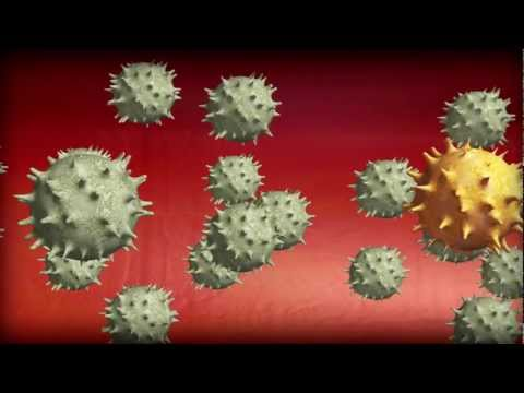 New SARS-like virus appears in Middle East
