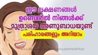Urinary  Infection: Symptoms, Diagnosis, and Treatment - Daily Malayalam Health Tips