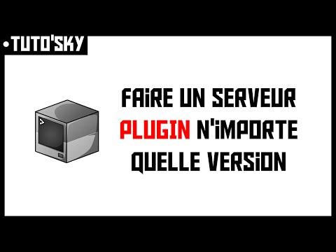 TUTO'SKY | Faire un serveur Minecraft avec plugin de n'importe quelle version (gratuitement)