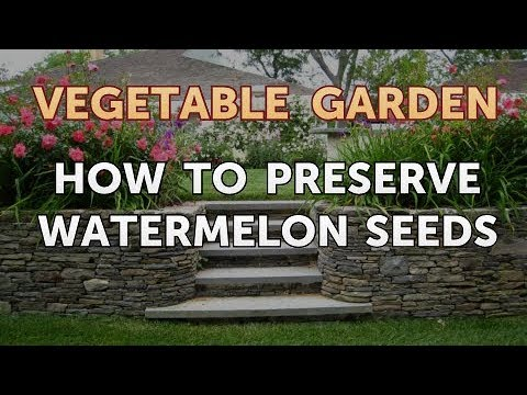 How to Preserve Watermelon Seeds