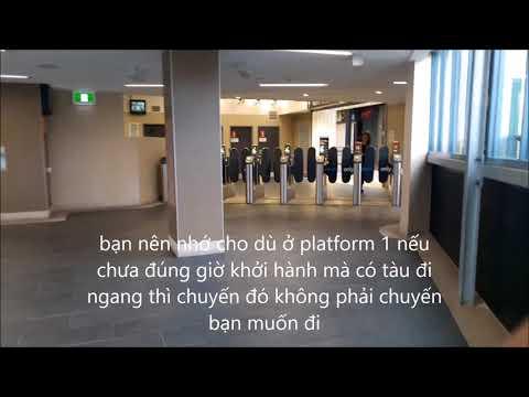 [Phần 3] Opal card - Station (sân ga) và Train (tàu)