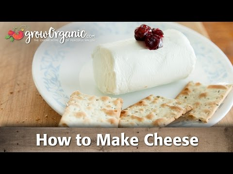 How to Make Organic Cheese at Home