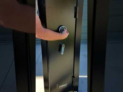 Format Safe DL 19 14 gun safe