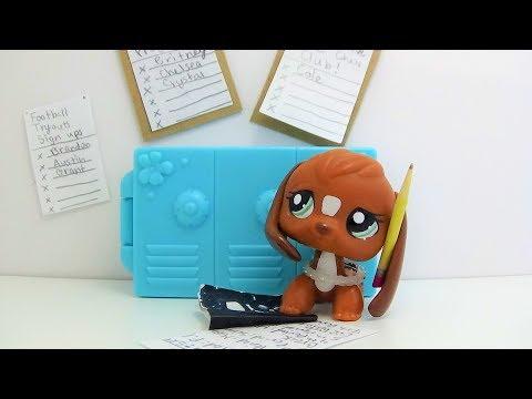 Lps DIY school accessories/ props