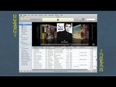 Getting to Know iTunes For Dummies