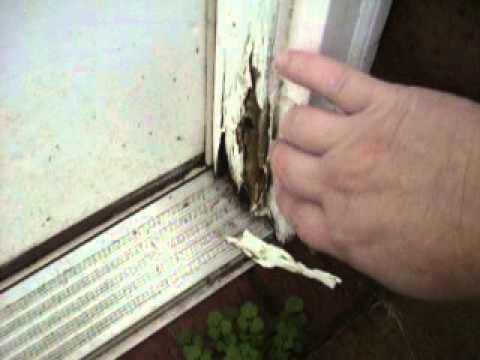 Rotted door jamb