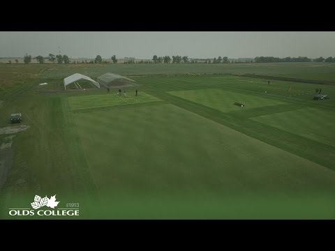 Turfgrass Management | Olds College