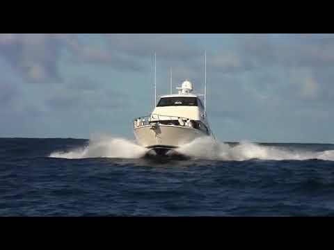Lord Howe Island Adventure