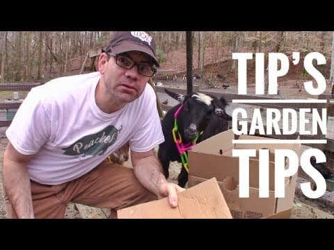 Simple & CHEAP Weed Control (TIP'S TIP) FREE Weed Mat - FREE Weed Barrier