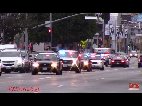 7x LAPD Slicktops & Unmarked Units Responding Code 3 in Hollywood
