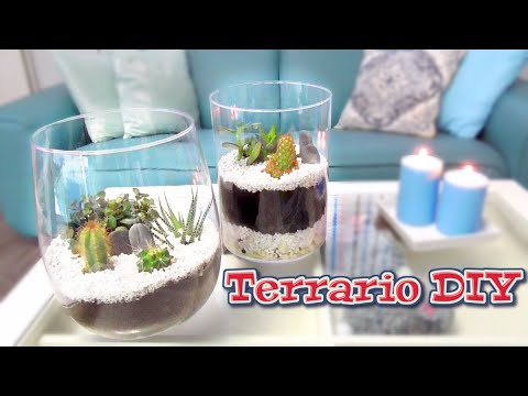 How to make your DIY Terrarium. Perfect gift idea