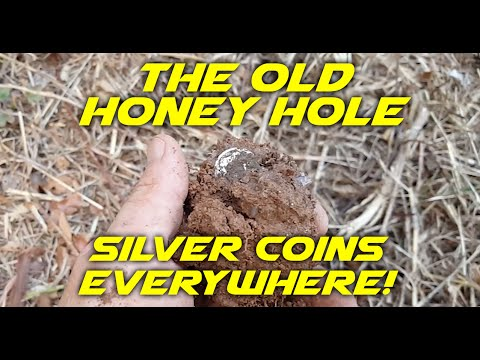 Metal Detecting Silver Coins At The Honey Hole!