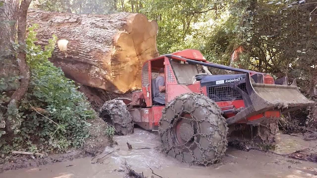 Amazing Dangerous Idiots Logging Wood Trucks Operator. Oversize Load Heavy Equipment Tractor Working